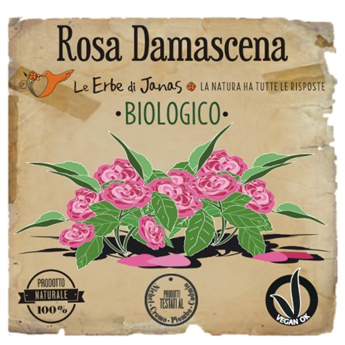 ROSA DAMASCENA Erba cosmetica 100gr Le Erbe di Janas